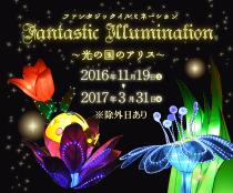 fantastic_illumination_bt