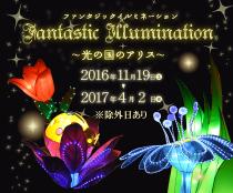 fantastic_illumination_bt-2